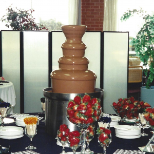 Large Chocolate Fountain Image